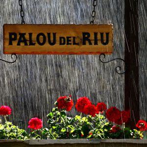 Foto Palou del Riu